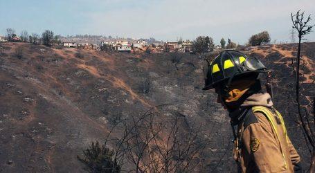 Cancelan Alerta Roja para la comuna de Coltauco tras controlar incendio forestal