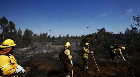 Gobierno entregó balance del plan de construcción de cortafuegos por incendios