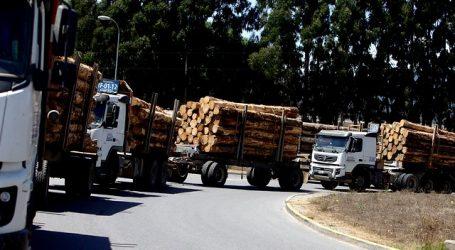 Camioneros exigen al gobierno respuestas ante nuevos atentados incendiarios