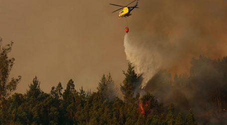 Incendio forestal en Fundo Coihueco de Penco amenaza viviendas