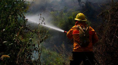 ONEMI reporta 13 incendios forestales activo a nivel nacional