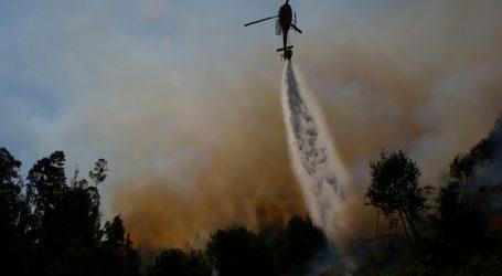 Declaran Alerta Roja para la comuna de Litueche por incendio forestal