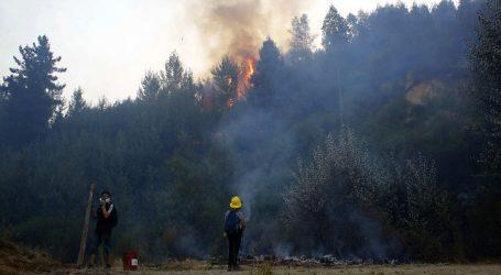 Onemi solicita evacuación de sectores en Galvarino por incendio forestal