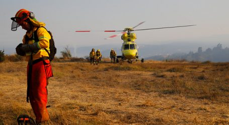 ONEMI: 8 incendios forestales se encuentran activos a nivel nacional