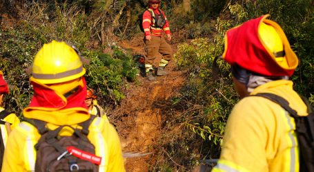 Declaran Alerta Roja para la comuna de San Vicente por incendio forestal