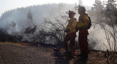 Bajan a Alerta Amarilla en la comuna de Litueche por incendio forestal