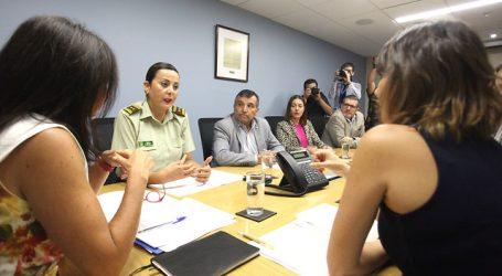 Gobierno desplegará 1.700 carabineras por conmemoración del 8M