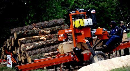 Diputado Celis pide investigar robo de madera en Laguna Verde