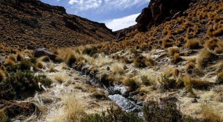 Bolivia afirmó que entrega a Chile de aguas del Silala será bajo compensación