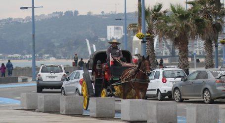 Victorias de Viña del Mar dejarán de funcionar con caballos en marzo