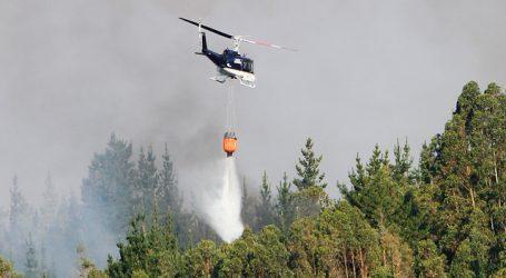 Decretan Alerta Roja por incendio forestal en Talca y Pencahue
