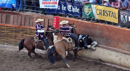 Coronavirus: Federación de Rodeo suspendió el Champion de Chile en Rancagua