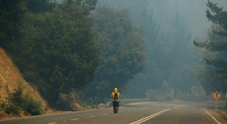Se declara Alerta Roja para la comuna de Traiguén por incendio forestal