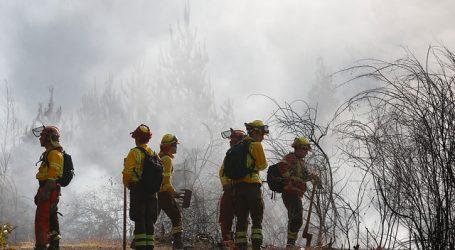 ONEMI reporta 19 incendios forestales activos a nivel nacional