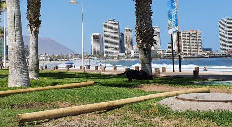 Restringen indefinidamente el acceso a las playas de la Región de Tarapacá