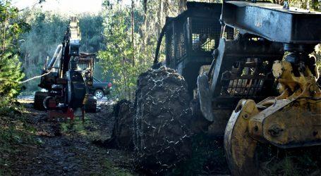 Ataque incendiario se registró al interior de fundo en la provincia de Arauco