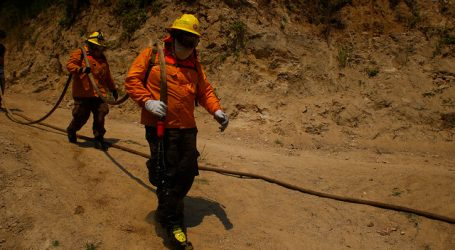 Mantienen Alerta Roja para la comuna de Arauco por incendio forestal