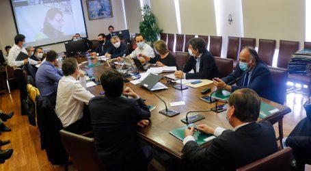Comisión despachó a Sala proyecto que crea ingreso familiar de emergencia