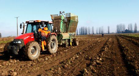 INDAP presentó medidas para pequeños agricultores por COVID-19 y la sequía