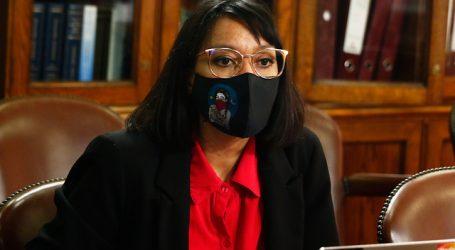 Diputada Natalia Castillo denunció que recibió canasta de alimentos en su hogar