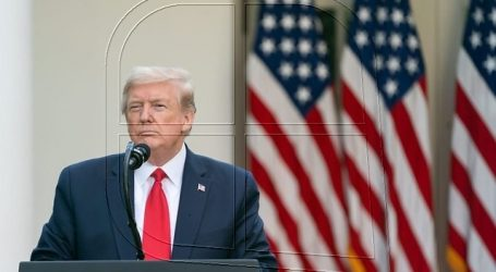 """Trump: EEUU tiene más casos """"porque hacemos más test que ningún otro país"""""""