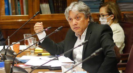 Navarro hará presentación a la ONU por violencia contra mapuche en La Araucanía