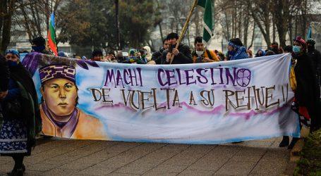 Diputados piden al Gobierno dialogar con presos mapuche en huelga de hambre