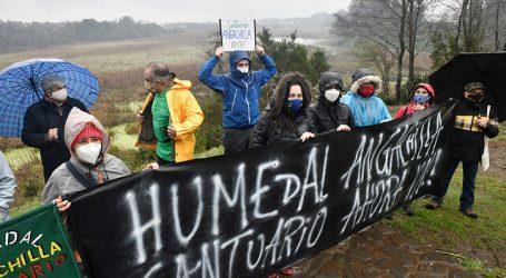 Piden declarar como Santuario de la Naturaleza al Humedal Angachilla de Valdivia