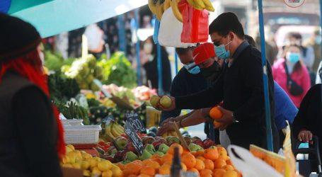 Autoridades lanzan concurso para escoger fruta y verdura preferida de Chile