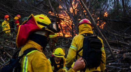 Declaran Alerta Roja para la comuna de Monte Patria por incendio forestal