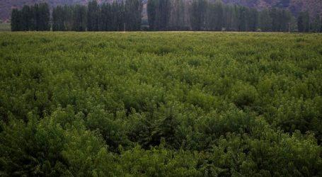 Ministra de Agricultura abordó efectos de las últimas lluvias en el país