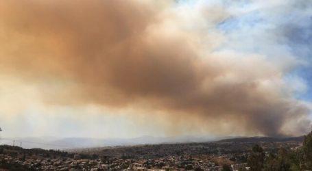 Gobierno reporta un 65% menos de superficie afectada por incendios forestales