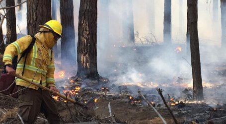 Alerta Roja: Seis incendios activos al interior de Reserva Lago Peñuelas
