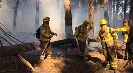 Alerta Roja para la comuna de Valparaíso por incendio forestal