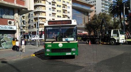 Valparaíso: Anuncian retorno del servicio de trolebuses a avenida Pedro Montt