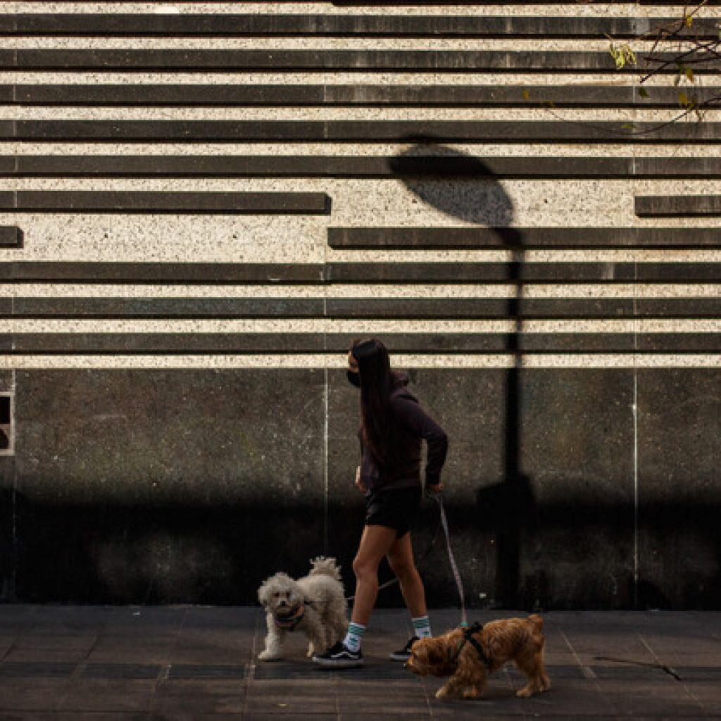 """""""Paso a Paso"""": 10 comunas de la RM saldrán de Cuarentena este jueves"""