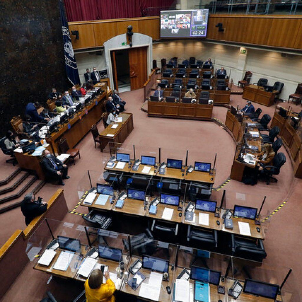 Senado revisará este viernes bono de alivio a Mypes que incluye a ferias libres