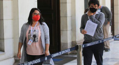 Oficialismo condena dichos de Loncon por violencia en la macrozona sur