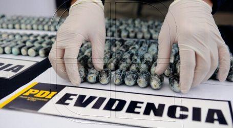 """PDI incauta más de 3 mil dosis de cocaína transportada por """"correos humanos"""""""