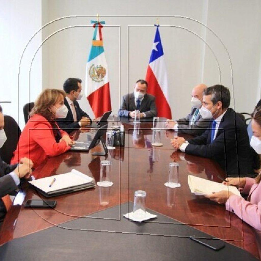 Subsecretario Rodrigo Yáñez participa en la Celac