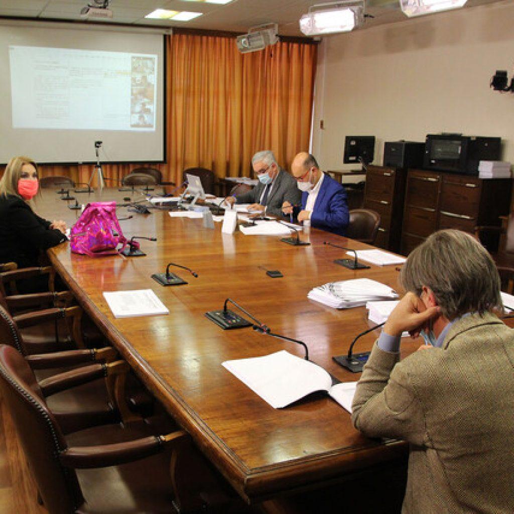 Comisión de la Cámara despacha a Sala el matrimonio igualitario