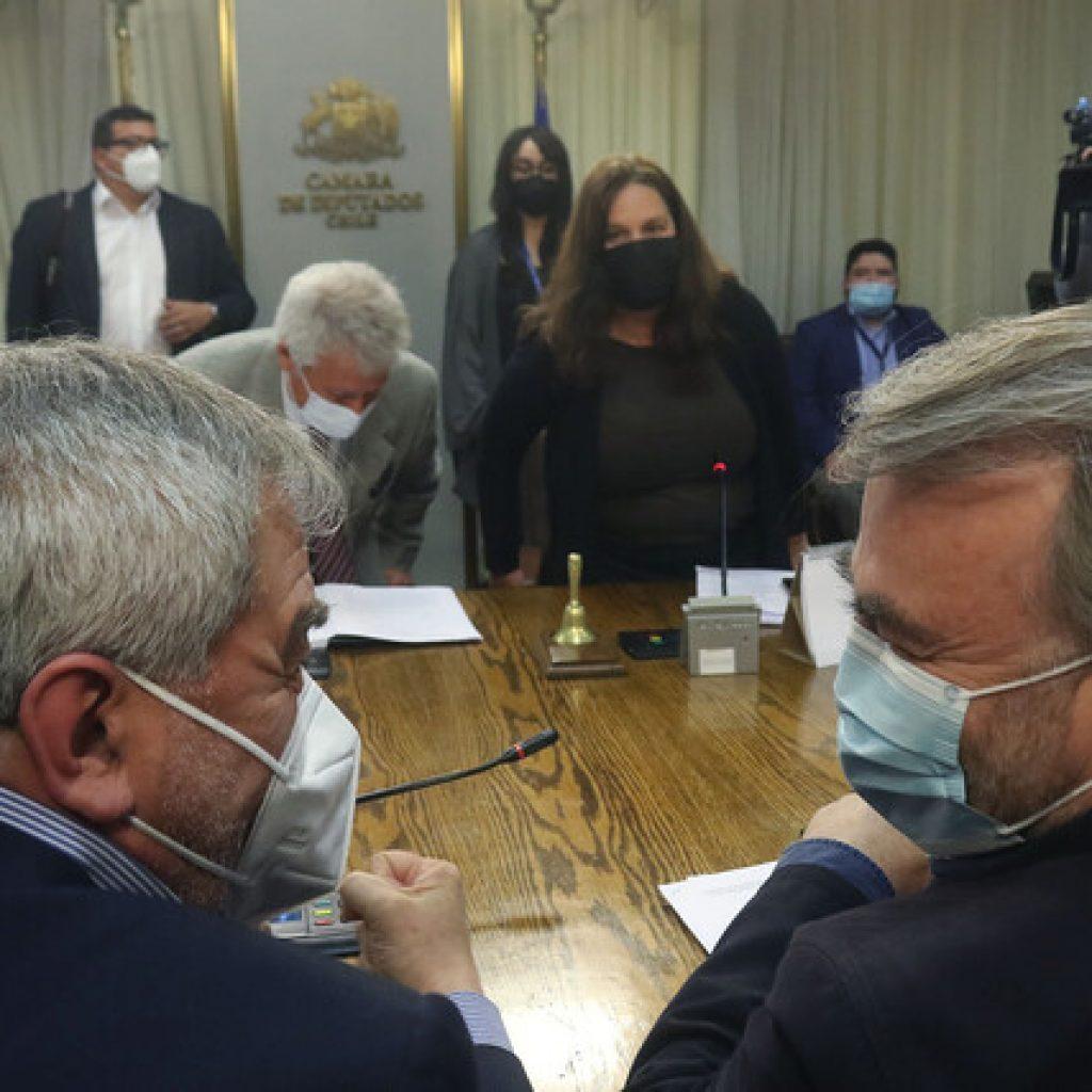 Maya Fernández (PS) presidirá comisión revisora de AC contra Piñera