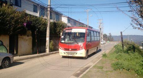 Transportes incorpora dos nuevos recorridos de buses en el Gran Valparaíso